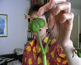 Kutlug Ataman: 'The Four Seasons of Veronica Read'; 2002; videostill