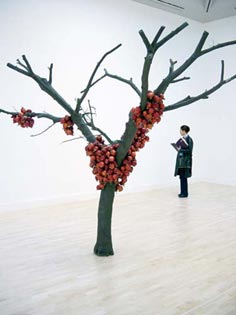 Anya Gallaccio: 'because I could not stop'; 2002