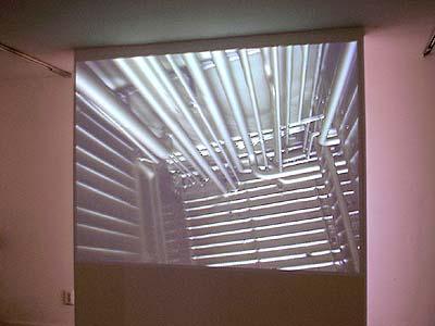 video 'Interloper' van Saskia Olde Wolbers in galerie Diana Stigter