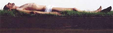 Robert Wevers: 'De idioot'; 2001; 46 x 130 cm